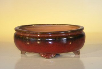 Ceramic Bonsai Pot - Oval