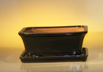 Ceramic Bonsai Pot  With Matching Humidity/Drip tray- Rectangle