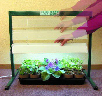 Jump Start Grow Light System - 4'