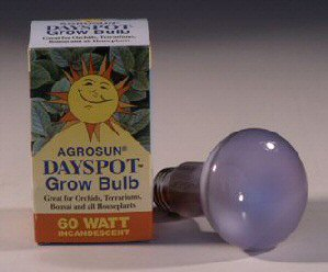 Grow Light Bulb