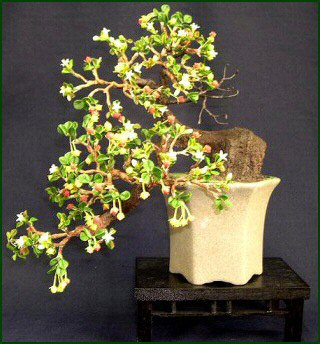 Artificial Fukien Tea Bonsai Tree