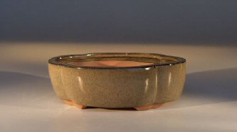Ceramic Bonsai Pot - Irregular Oval
