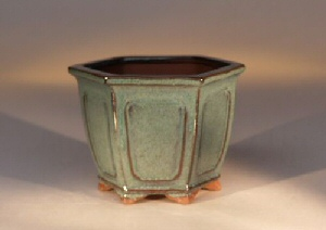 Ceramic Bonsai Pot Hexagon -  Green