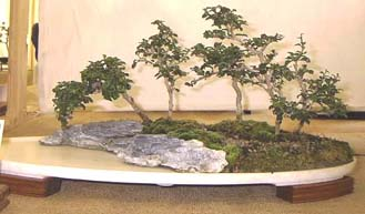 Water and Land Penjing, Unknown Owner